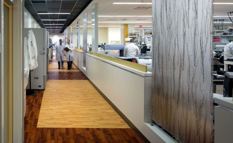 Emory University Hospital Cytogenetics Laboratory