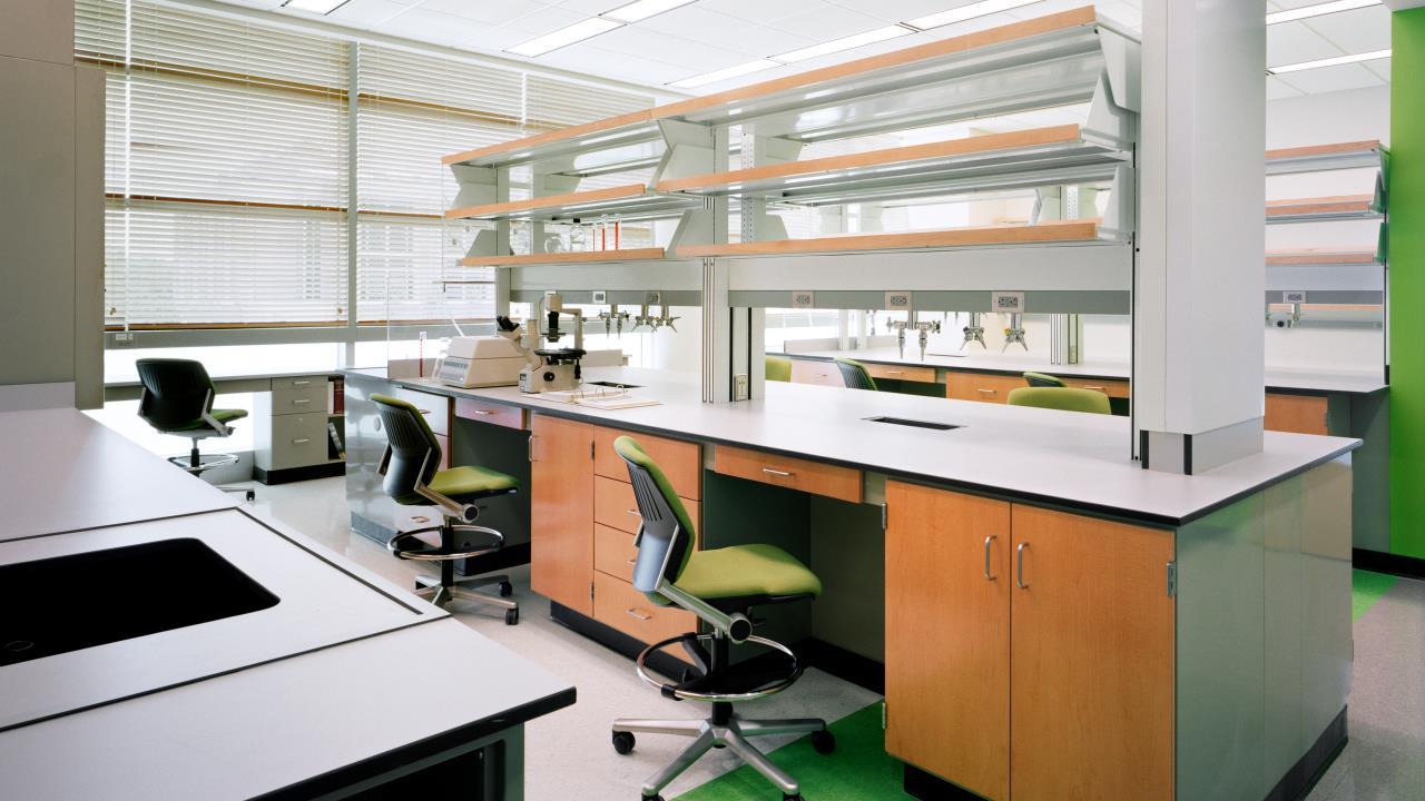 Georgia Tech Biomedical Engineering